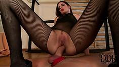 Brunette in fishnet stocking sucks cock in between getting drilled