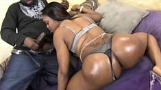 Curvy caramel babe with a big round booty Alexis Silver sucks and fucks a black cock