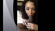 Blonde Amateur Milf Wife Hardcore Interracial